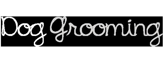 dog_grooming_2